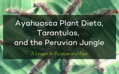 Plant Dieta, Tarantulas, and the Peruvian Jungle: A Lesson in Purpose and Fear