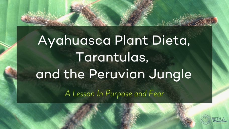 Plant Dieta, Tarantulas, and the Peruvian Jungle: A Lesson in Purpose and Fear